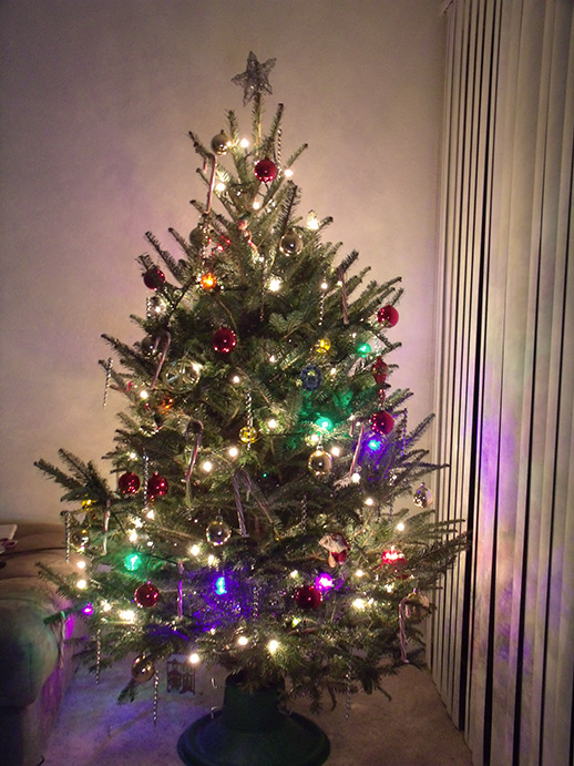 Christmas Trees For Small Apartments.Christmas Tree Blogging Mollie